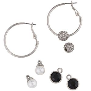 Picture of Interchangeable Silver Hoop Set